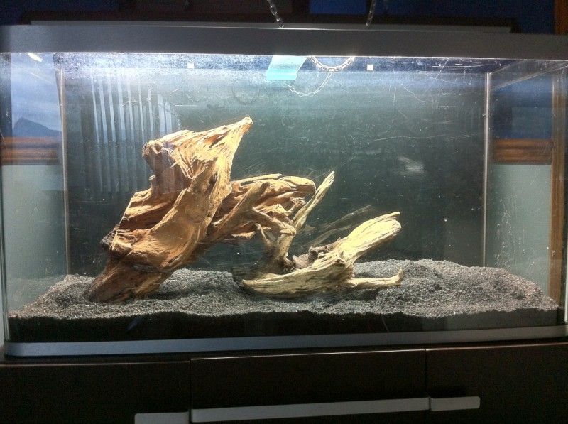 Osaka forest tank log fish tank projects for Fish tank driftwood