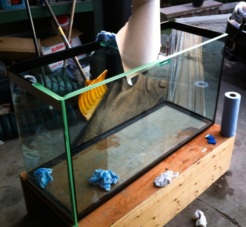 prep-aquarium-for-painting