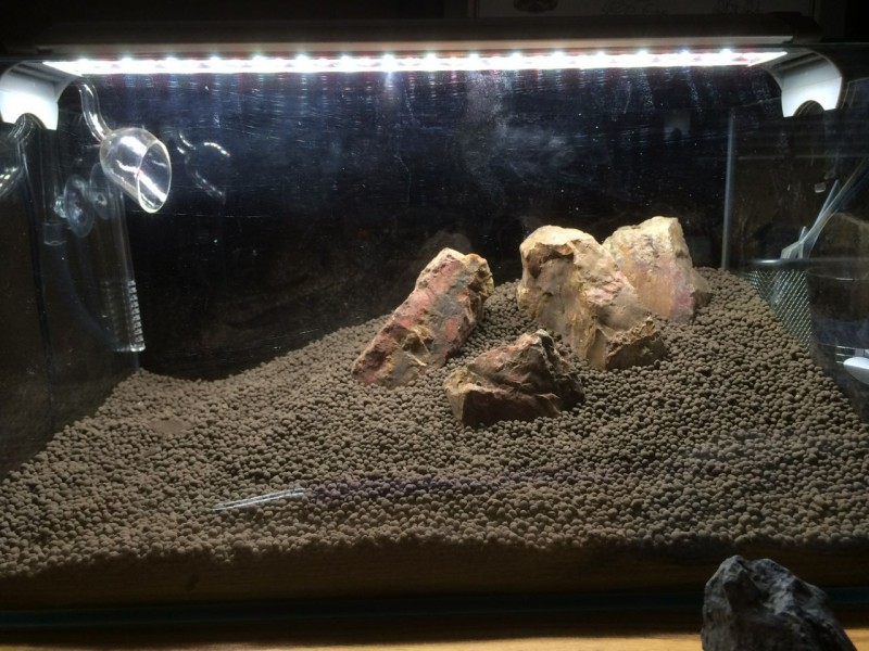 Aquascape Hardscape
